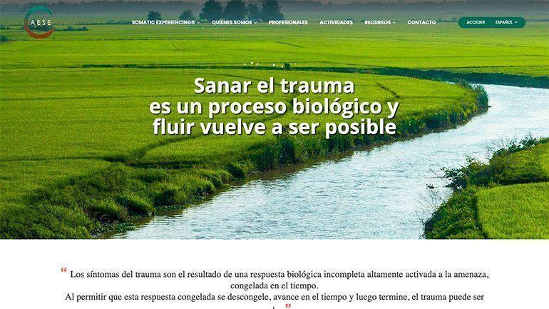 Página Web AESE Páginas Web Profesionales