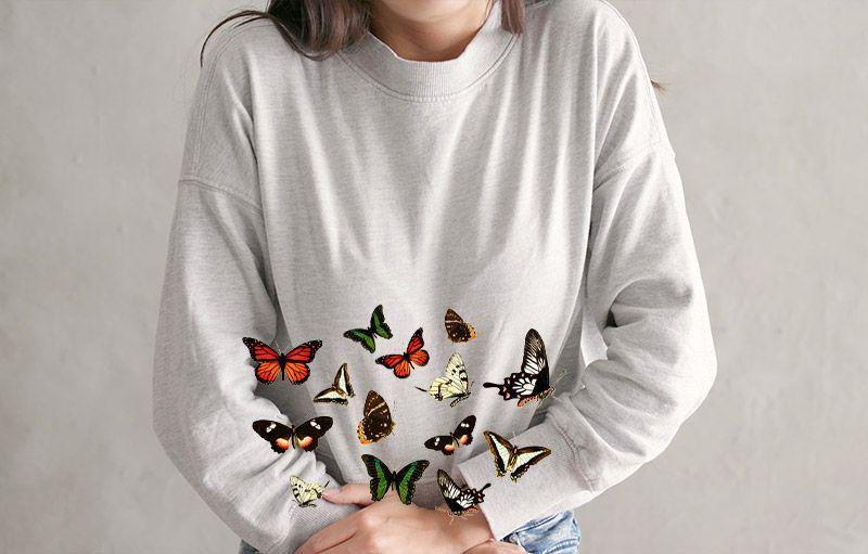 blog-el-patio-de-mi-web-mariposas